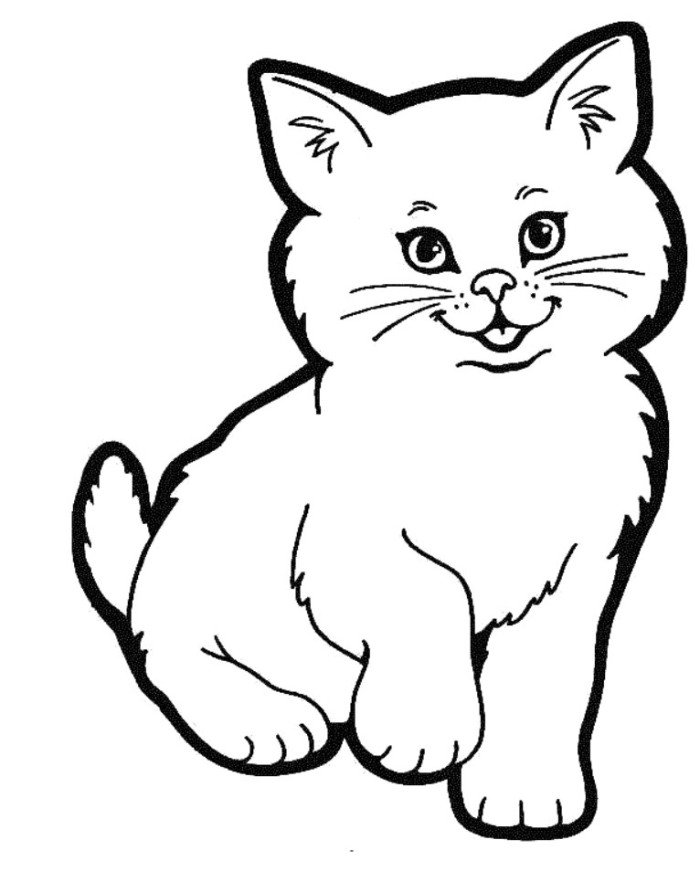 How To Draw A Cute Realistic Cat Cartoon Face Step By Step For