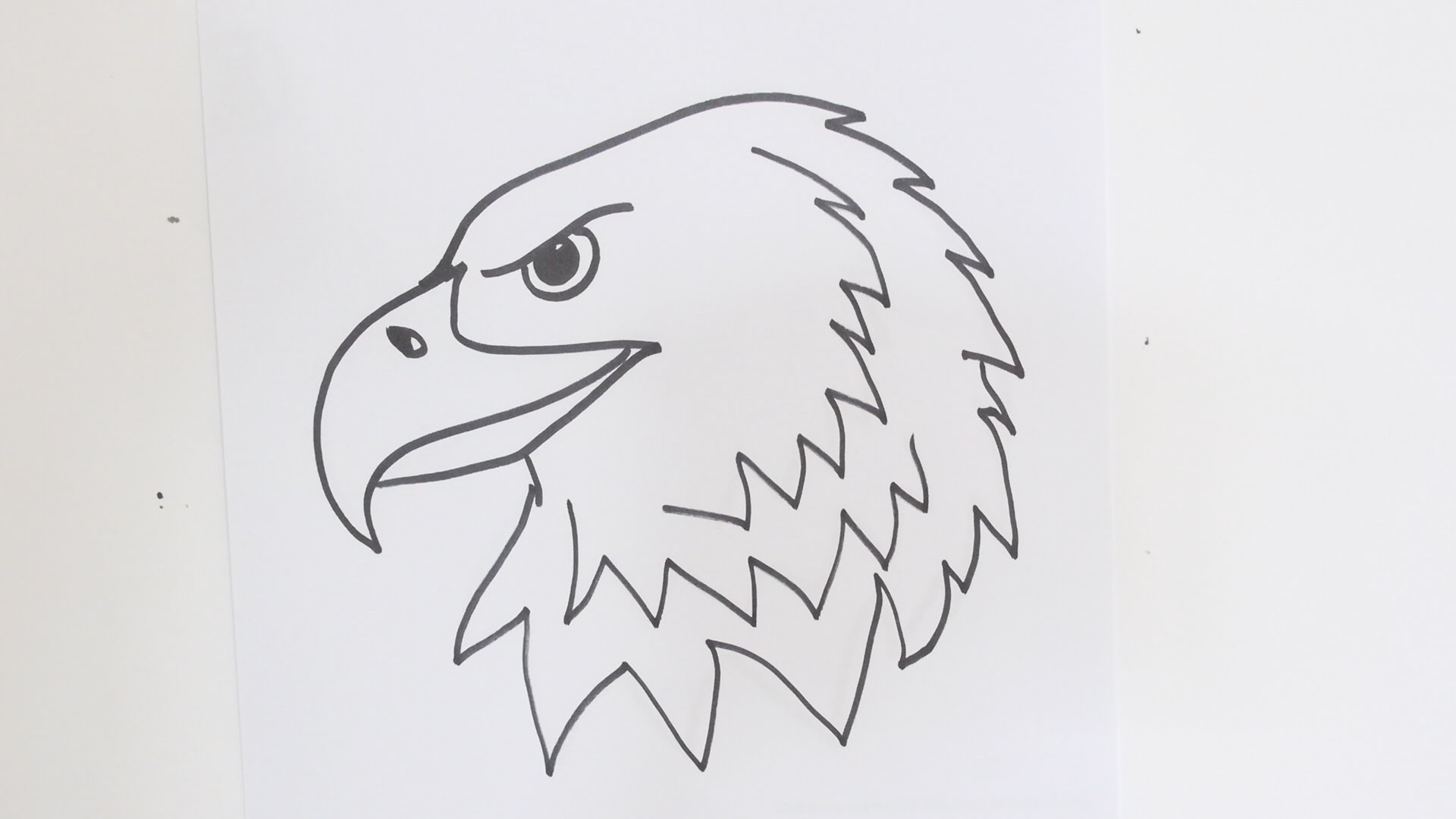 How to draw an eagle head step by step easy video tutorial ...